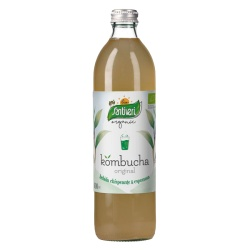 Kombucha Original 500ml Santiveri